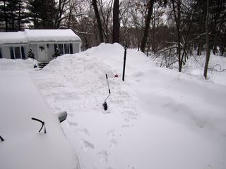 Snow_2576