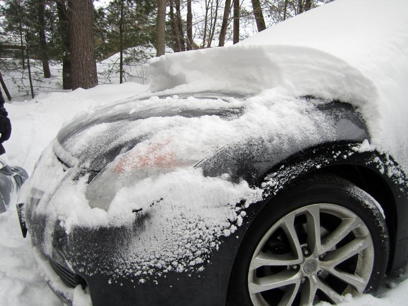 Snow_2593